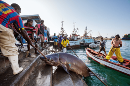 Cabo Verde Praia